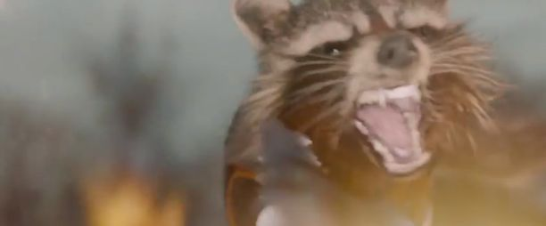 Rocket_Raccoon_in_Guardians_of_the_Galaxy_film