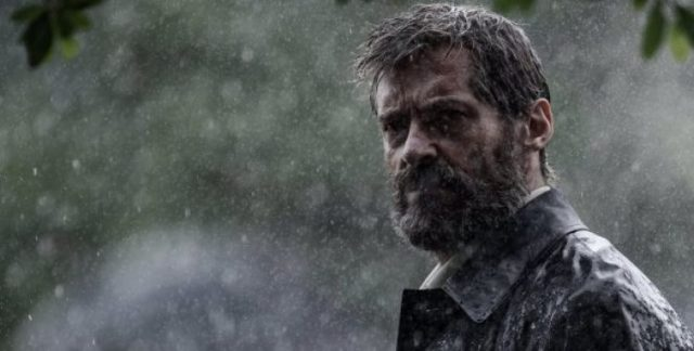Logan na chuva.jpeg